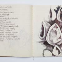 LJ_sketchbooks_4.jpg
